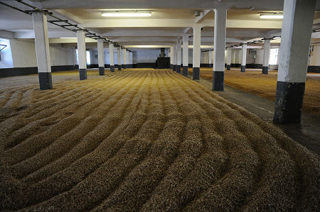 Undiscovered Scotland Making Malt Whisky The Maltings