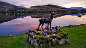 Stag and loch