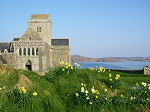 Iona Abbey in the Spring